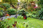 Nous vous accompagnons dans la vie de votre jardin