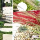 realisation-jardin-sec-4