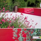 realisation-jardin-sec-5